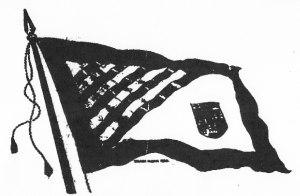 Victory Loan flag